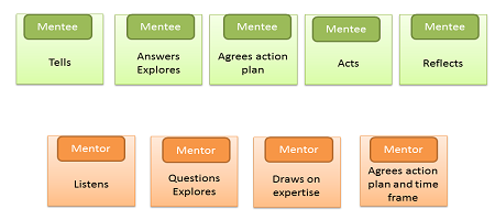 Components of mentoring Mentoring